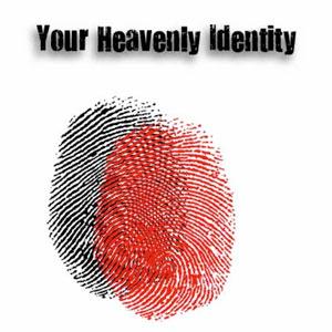 heavenly identity cd teaching series