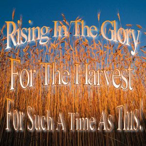 rising in the glory CD series